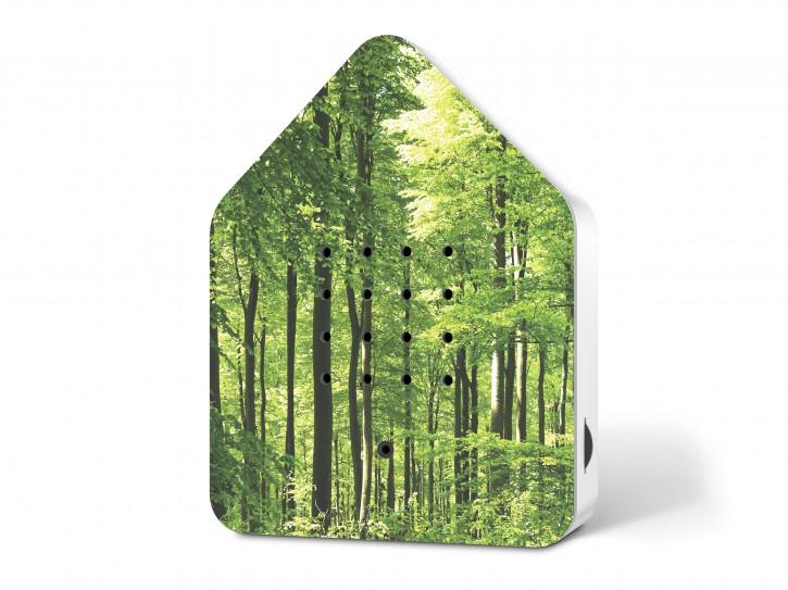 Zwitscherbox - Wald
